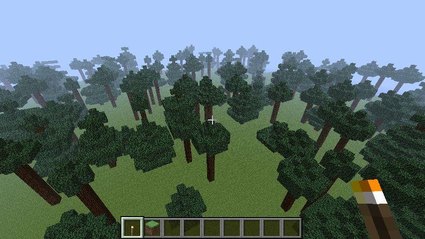 [Image: conifers3.jpg]